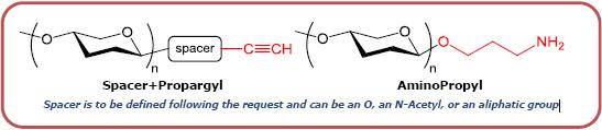 Isoglobo三糖-β-N(乙酰基)-丙炔,Isoglobotriaose-β-N(Acetyl)-Propargyl,   Galα1-3Galβ1-4Glcβ-NAc-Propargyl, C23H37NO16, 货号:GLY070-NPR