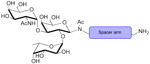 A血型抗原三糖-空间构型1-氨基,Blood group A antigen triaose-spacer1-Amino, GalNAcα1-3(Fucα1-2)Galβ-NAc-spacer1-NH2, C28H48N6O15, 货号:GLY052-NAc-sp3-Bt