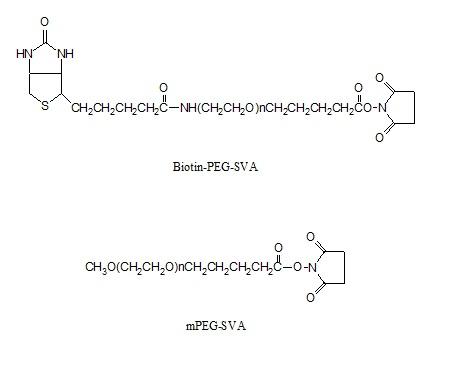 Laysan 生物素-PEG-琥珀酰亚胺戊酸酯和聚乙二醇-琥珀酰亚胺戊酸酯套装 Biotin-PEG-SVA_mPEG-SVA 是生物素-PEG-琥珀酰亚胺戊酸酯和聚乙二醇-琥珀酰亚胺戊酸酯的套装产品。包含分子量为5000的生物素-PEG-琥珀酰亚胺戊酸酯 100mg 和聚乙二醇-琥珀酰亚胺戊酸酯 1g。