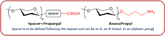 GD2神经节苷脂类糖-β-N-乙酰基-丙炔,GD2 Ganglioside sugar-β-NAc-Propargyl, GalNAcβ1-4(Neu5Acα2-8Neu5Acα2-3)Galβ1-4 Glcβ-NAc-Prop, C47H72N4O32Na2, 货号:GLY094-NPR