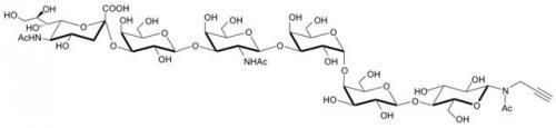 SSEA-4六糖-β-N-乙酰基-丙炔,SSEA-4 hexaose-β-NAc-Propargyl, NeuAcα2-3Galβ1-3GalNAcβ1-3Galα1-4 Galβ1-4Glcβ-NAc-Propargyl, C48H76N3O34Na, 货号:GLY131-NPR