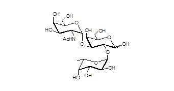 A血型抗原三糖,Blood group A antigen triaose, GalNAcα1-3(Fucα1-2)Gal .C20H35NO15 。[49777-13-1] 。货号:GLY034
