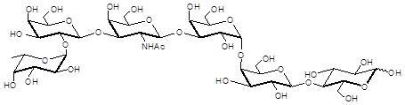 阶段特异性胚胎抗原3b, Globo-H hexaose / Stage Specific Embryonic Antigen 3b / SSEA-3b,Fucα1-2Galβ1-3GalNAcβ1-3Galα1-4Galβ1-4Glc; C38H65NO30; 货号:GLY122