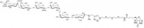 SSEA-4六糖-β-N-乙酰基-空间构型3-生物素,SSEA-4 hexaose-β-NAc-spacer3-Biotin, NeuAcα2-3Galβ1-3GalNAcβ1-3Galα1-4 Galβ1-4Glcβ-NAc-spacer3-Biotin, 货号:GLY131-NAc-sp3-Bt