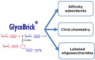 GM3神经节苷脂类糖凝胶,GM3 ganglioside sugar GEL, Neu5Acα2-3Galβ1-4Glcβ-NAc-Spacer-Bead with propargylated GM3 GLY090-NPR, 货号:GLY090-GEL