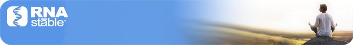 RNAstable|RNA室温保存|室温稳定剂-金畔生物
