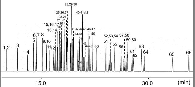 66种农药混标溶液 WQ-1-2 (168-26631)