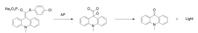 (4-氯苯巯基)(10-甲基-9,10-二氢化吖啶亚甲基)磷酸二钠盐